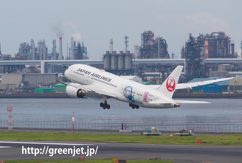 JAL ボーイング 787-8 Dreamliner