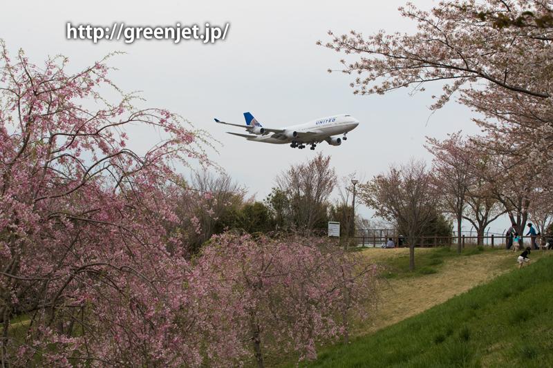 成田 さくらの山 ユナイテッド航空 ボーイング747