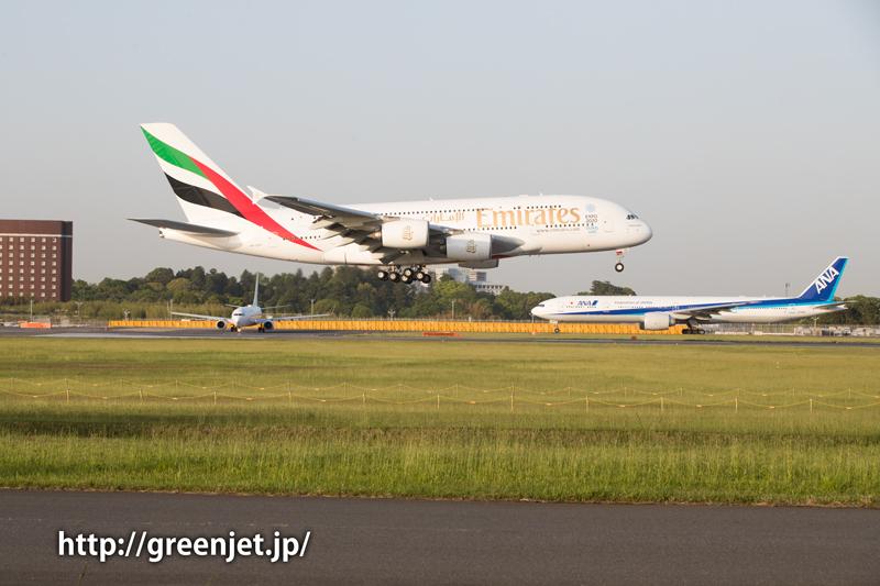 成田 さくらの山 エミレーツ航空 エアバス A380-861