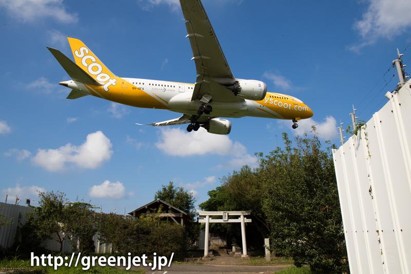 成田 東峰神社にて スクート・タイガーエア 787-8 Dreamliner