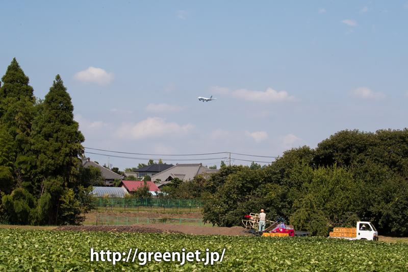 成田某所 アリタリア航空 ボーイング777