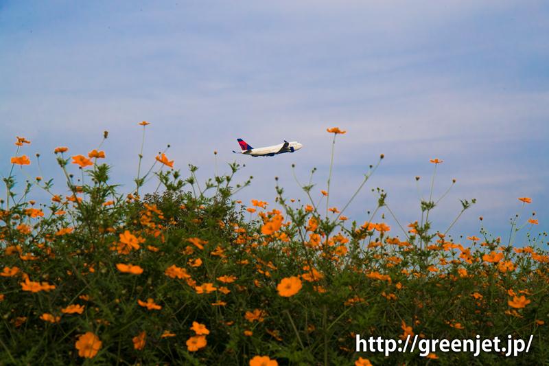 成田空港周辺にて、離陸直後のデルタ航空のボーイング747