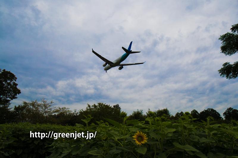ガルーダ・インドネシア航空 エアバス A330