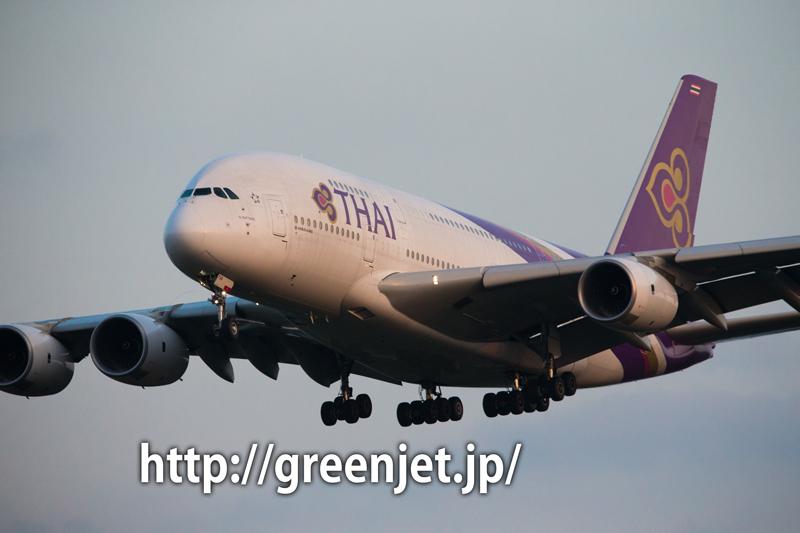 ひこうきの丘 タイ国際航空 エアバス A380-841