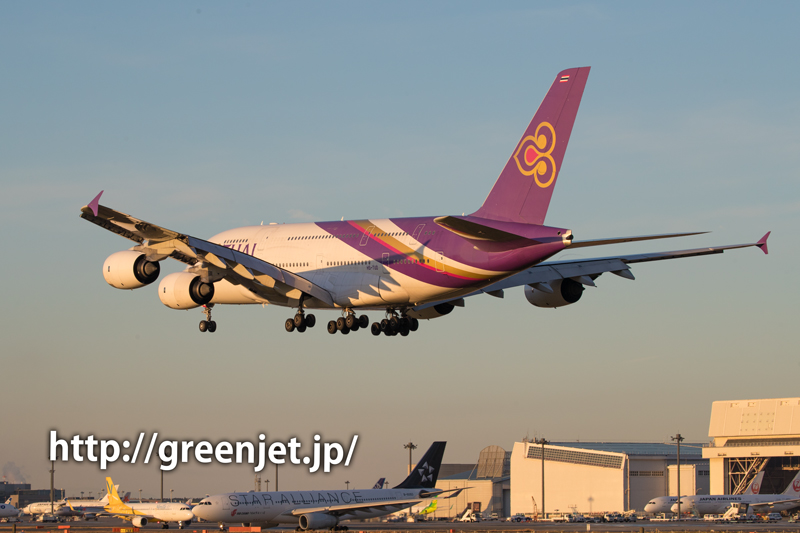 ひこうきの丘/タイ航空のエアバスA380