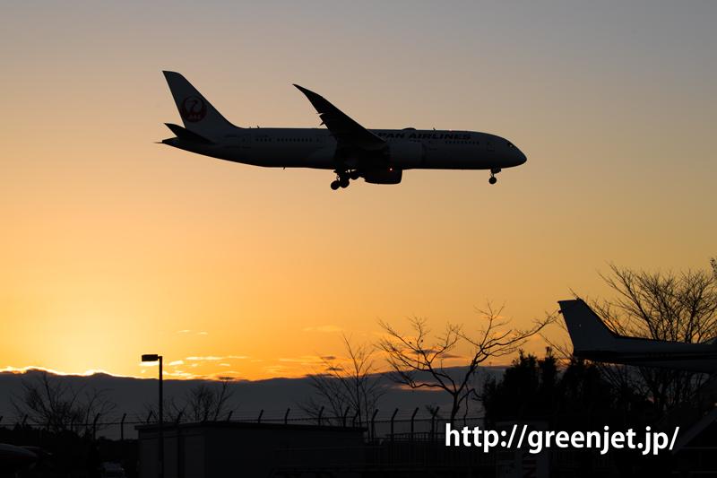 成田空港付近の夕陽と日本航空のボーイング787