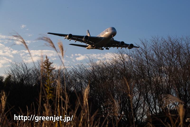 シンガポール航空のエアバスA380@成田