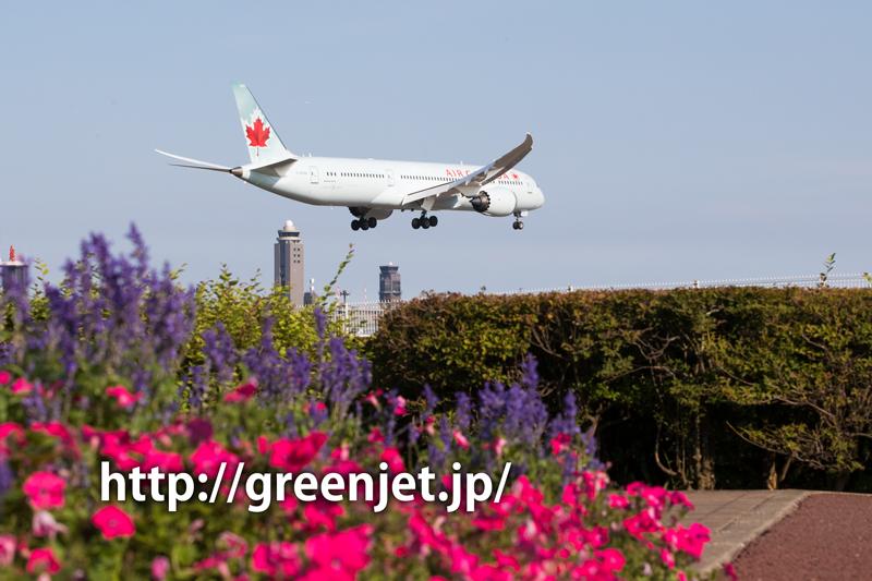 成田で撮影したエアカナダのボーイング787