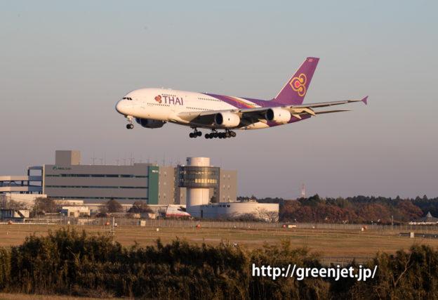 タイ国際航空のエアバスA380@さくらの丘