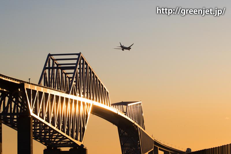 夕陽に輝く東京ゲートブリッジと飛行機(ANAのボーイング787)