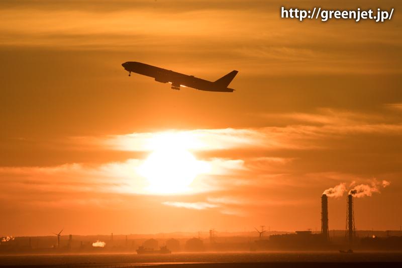 早朝の羽田空港の朝焼けとJALのボーイング777