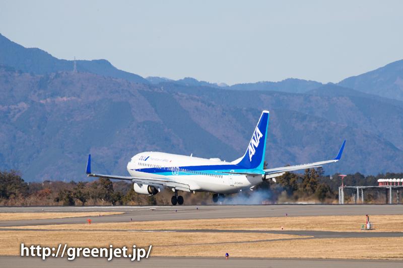 ANAのボーイング737@富士山静岡空港