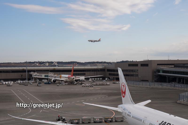 【成田の飛行機撮影スポット】第二ターミナル展望デッキ@ジェットスターのA320