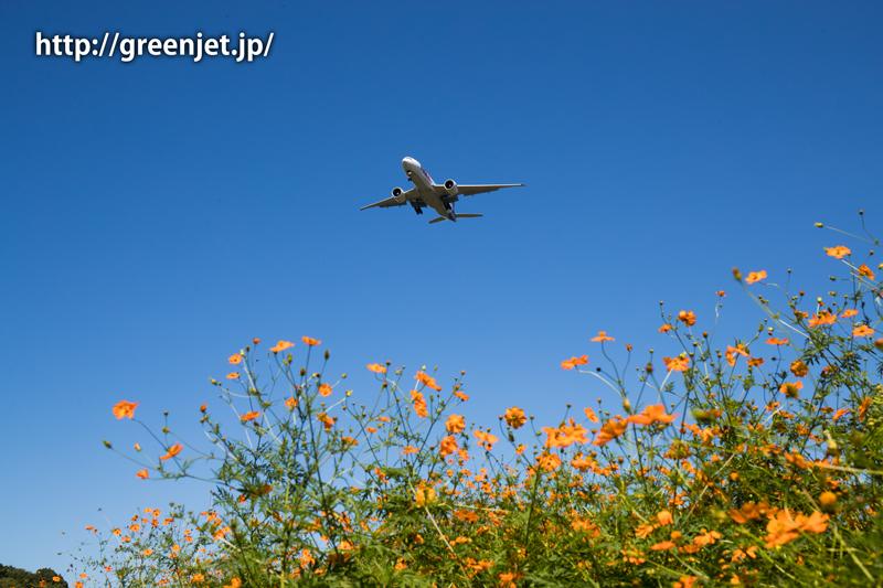 【成田の飛行機撮影スポット】小菅橋@