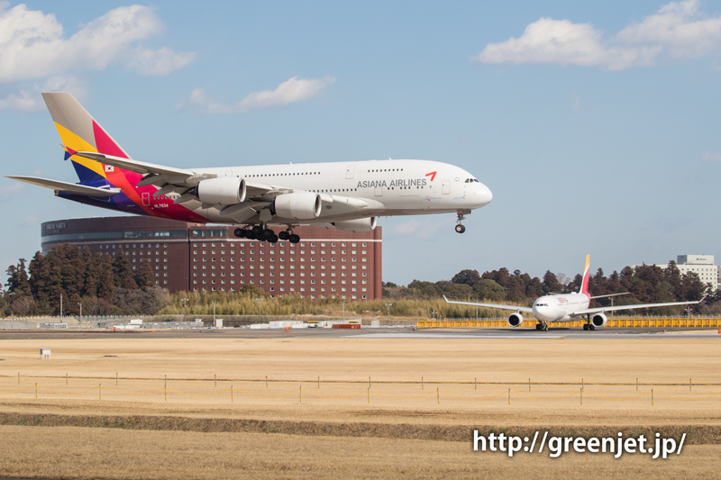 【成田の飛行機撮影スポット】ゲジポイント@アシアナのA380