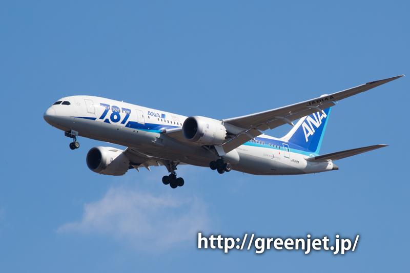 【成田の飛行機撮影スポット】ひしだこいびとはし@ANAのB787