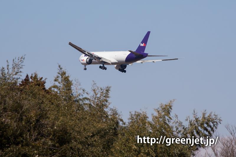 【成田の飛行機撮影スポット】ひしだこいびとはし@フェデックスのB777