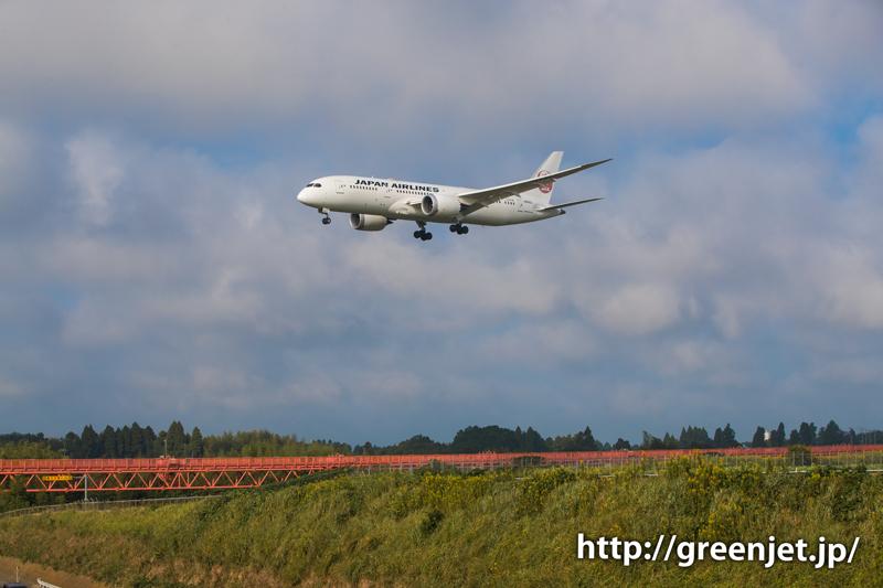 【成田の飛行機撮影スポット】第三四本木橋@JALのB787