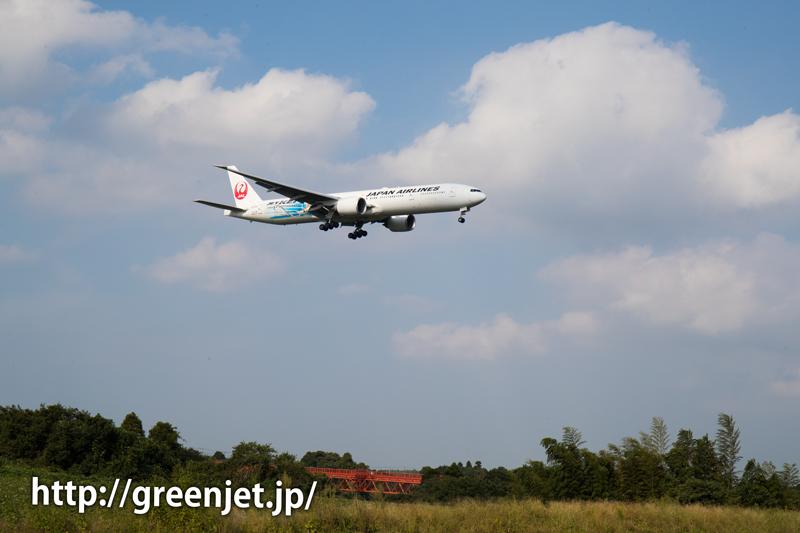 【成田の飛行機撮影スポット】野球場ポイント@JALのB777(JET-KEI)