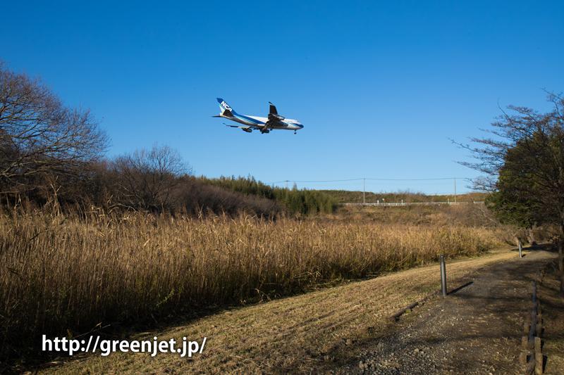 【成田の飛行機撮影スポット】芝山水辺の里 NCAのジャンボ