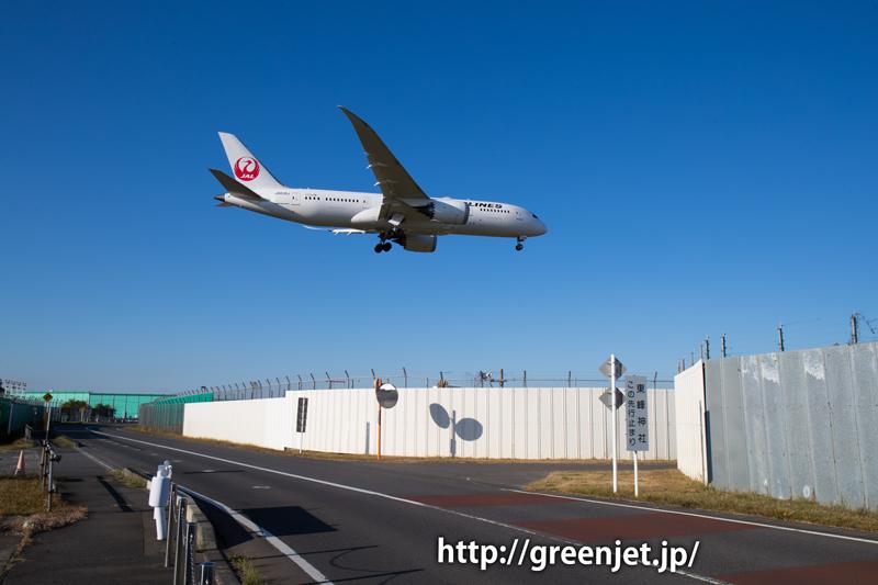 【成田の飛行機撮影スポット】東峰神社/JALのB787