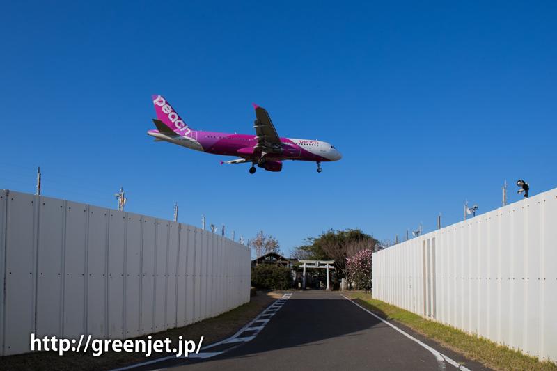 【成田の飛行機撮影スポット】東峰神社/ピーチ・アビエーションのA320