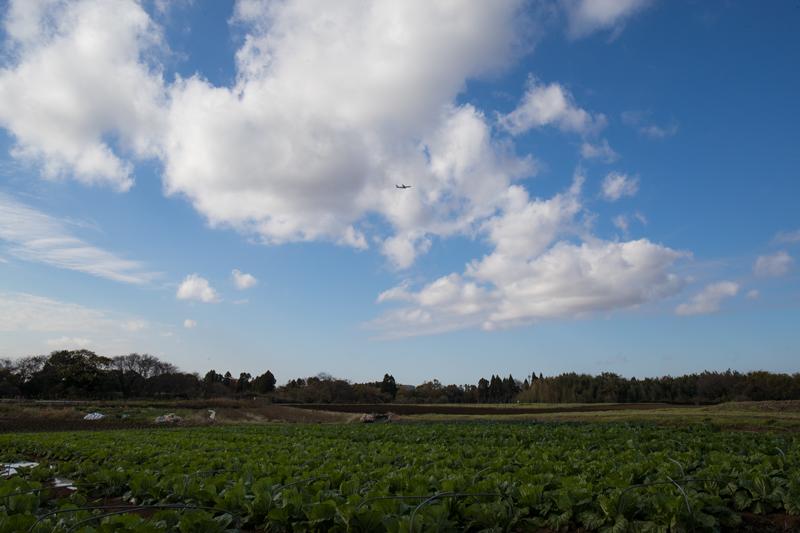 【成田の飛行機撮影スポット】野球場ポイント