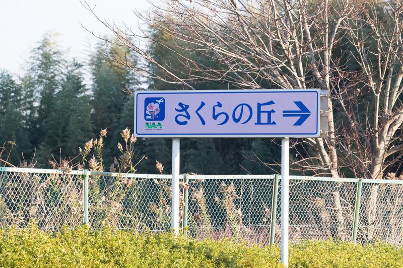 三里塚さくらの丘入口