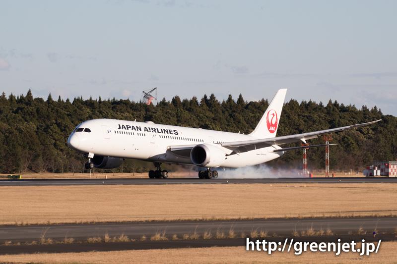 【成田の飛行機撮影スポット】ゴルフ場入口@JALのB787