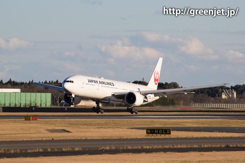 【成田の飛行機撮影スポット】ゴルフ場入口@JALのB777