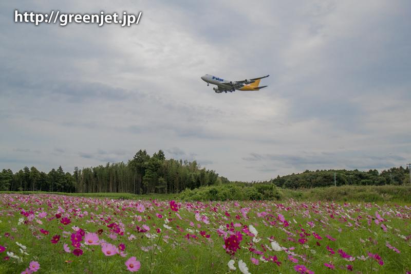 【成田の飛行機撮影スポット】グリーンポート エコ・アグリパーク@ポーラーエアカーゴのジャンボ