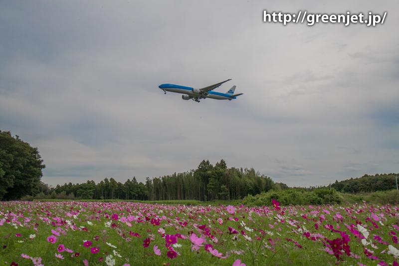 【成田の飛行機撮影スポット】グリーンポート エコ・アグリパーク@KLMのB777