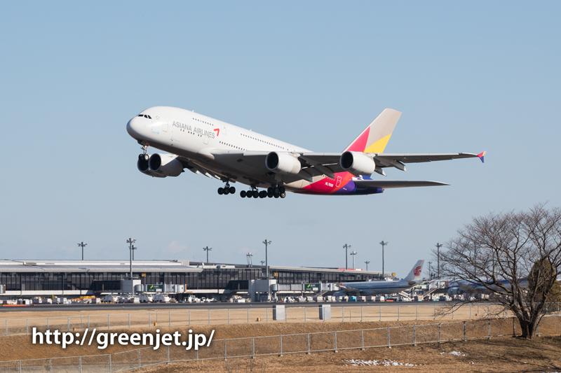 アシアナ航空のエアバスA380@奥の細道