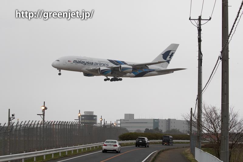 マレーシア航空のエアバスA380@雨の畑ポイント