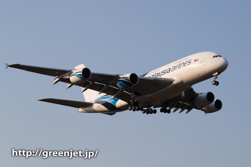 マレーシア航空のエアバスA380@芝山水辺の里