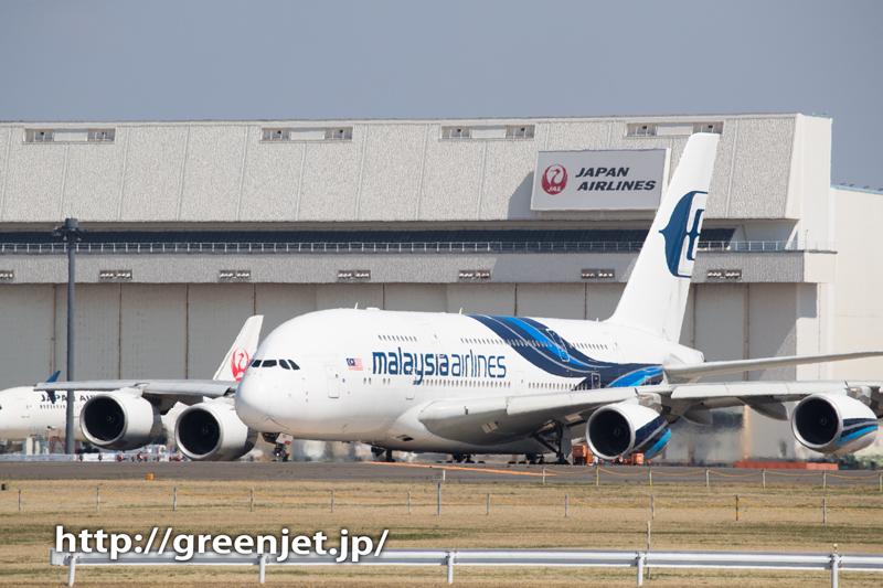 マレーシア航空のエアバスA380@ひこうきの丘