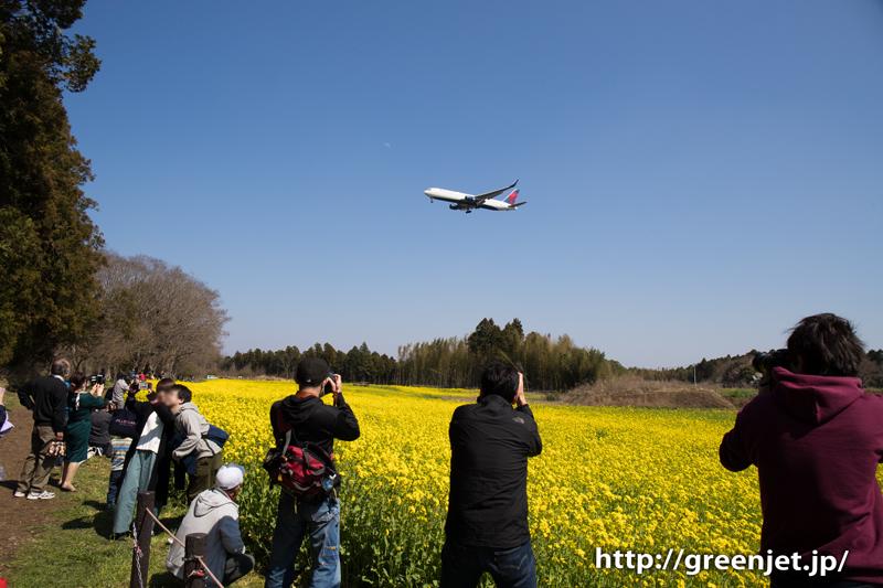 芝山水辺の里で菜の花と飛行機の写真を撮影してきました!