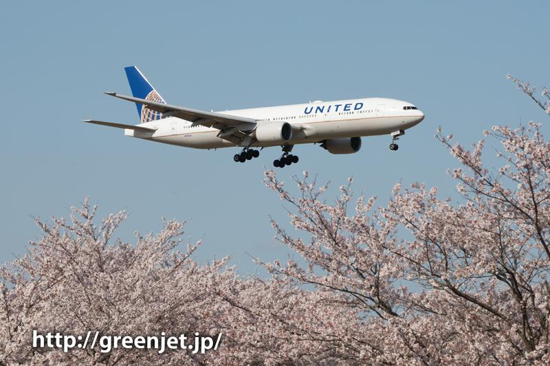 ユナイテッドのB777@桜満開のさくらの山