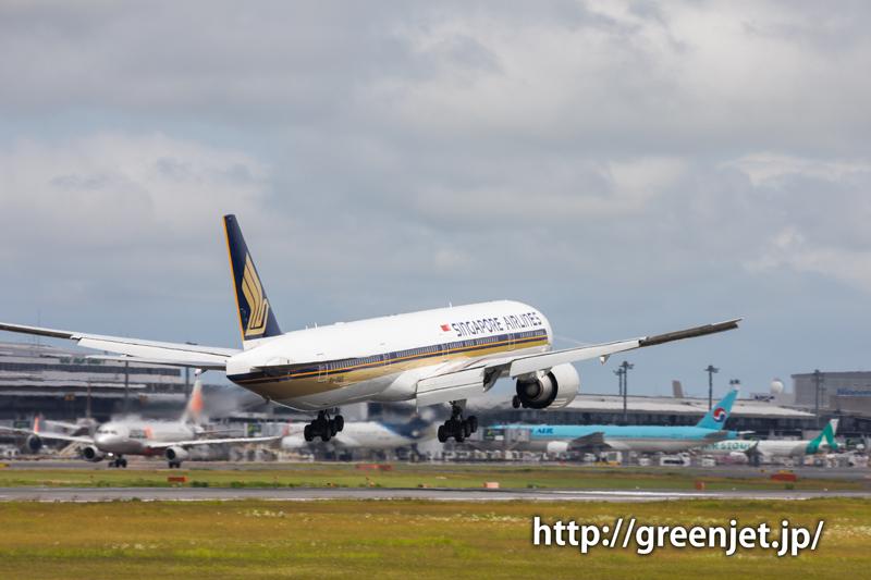 アジサイと飛行機@シンガポール航空のB777