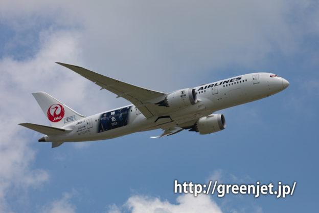 JAL SAMURAI BLUE 応援ジェット2号機