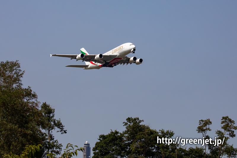 奇跡だね!さくらの丘で撮ったエミレーツのA380