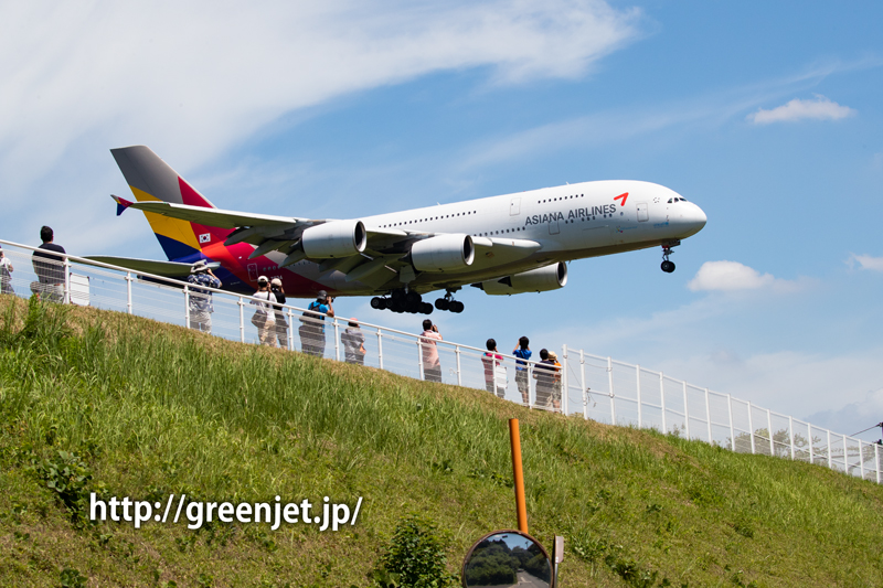 アシアナ航空のエアバスA380@さくらの山
