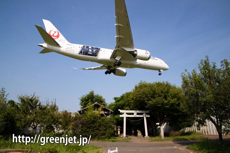 東峰神社で捉えたぞっ!サムライブルー応援ジェット2号機