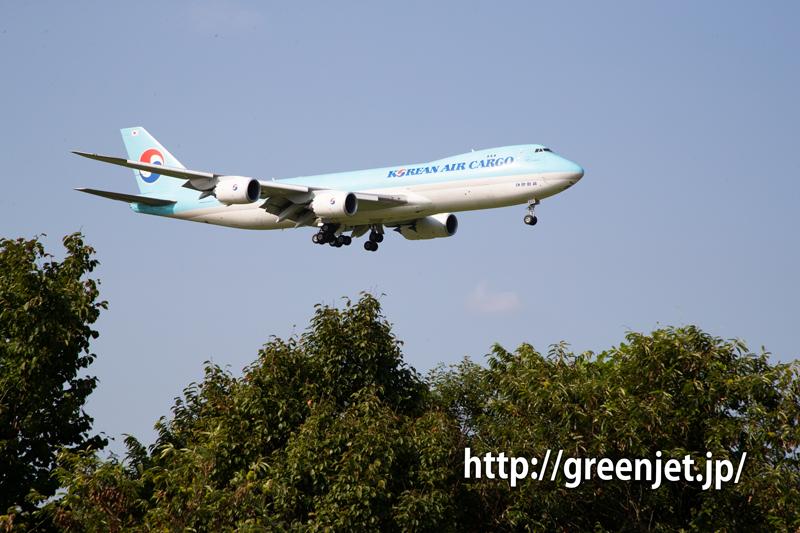 Korean Air Cargo のジャンボ@さくらの山