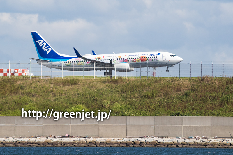B737-800 JA85AN 東北フラワージェット