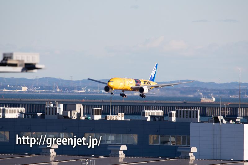 ANA スターウォーズジェット C-3PO @羽田の国際ターミナル展望デッキ