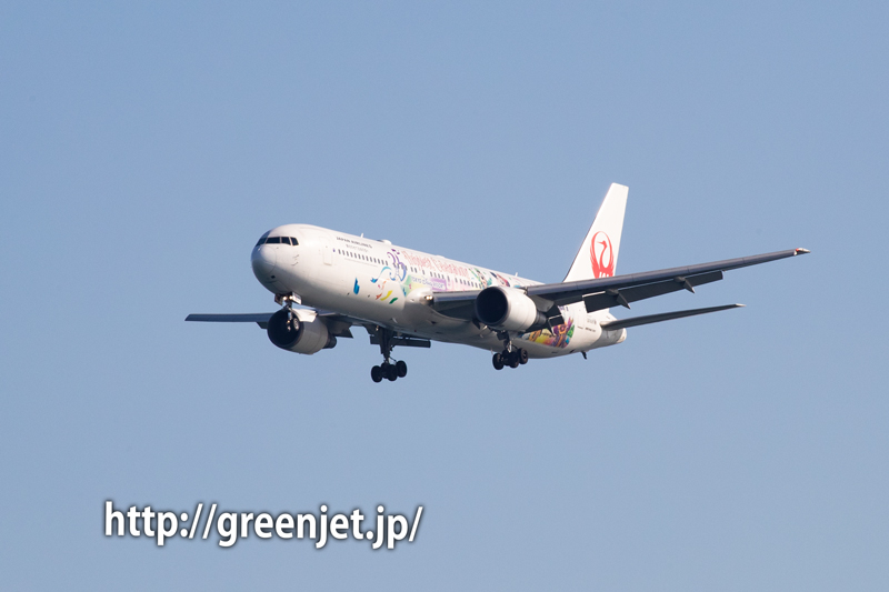 JAL Celebration Express@浮島