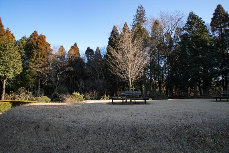 成田空港RWY34Lエンド付近、朝倉やすらぎの杜