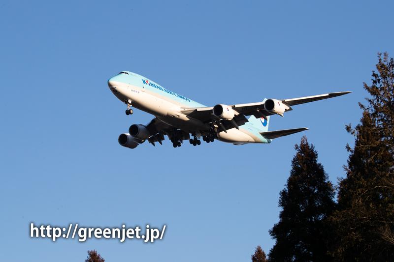 朝倉やすらぎの杜で捉える海外勢の飛行機