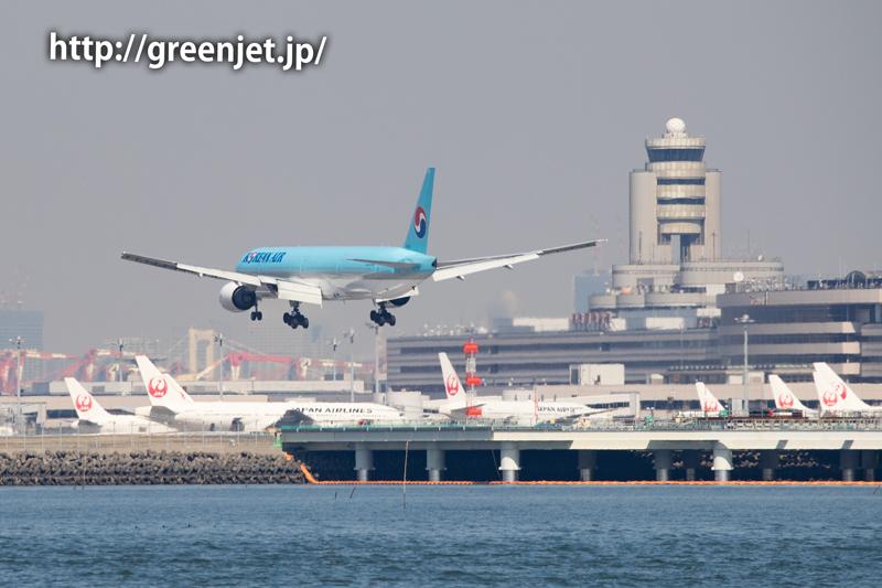 スカイブルーのB777~大韓航空